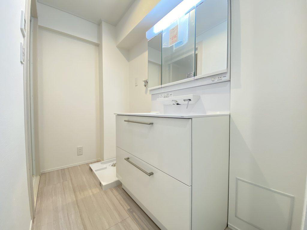 洗面化粧室の様子です。広々設計のすべり台ボウル。エコシングル水栓で節水、節湯ができます。排水口は抗菌、抗カビ仕様となっています。室内洗濯機置き場もこちらになります。